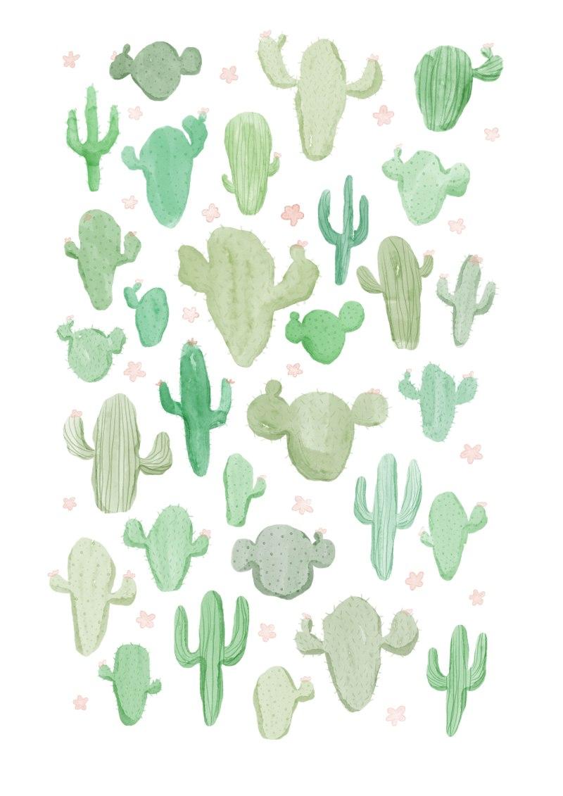 kaktus mønster
